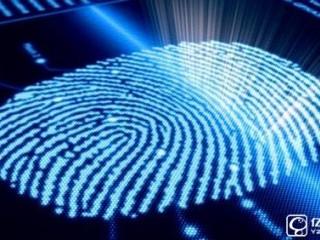 2016有哪些值得入手的指纹机 2016年热门指纹识别手机推荐
